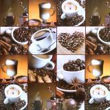 Клеенка ПВХ на нетканой основе 1,4*20м кофе Dekorama (1/1)