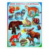 Плакат учебный детский 594*456мм Дикие животные и их детеныши АВ-принт (1/10)