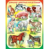 Плакат учебный детский 594*456мм Домашние животные и их детеныши АВ-принт (1/10)