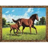 Картина из гобелена 60*80 см Лошадь с жеребеноком Постер-Лайн (1/1)